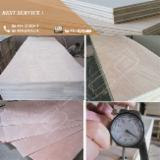 750; 850; 950; 10000X2050X3.2mm Okoume Door Skin Plywood