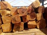 Kopen Of Verkopen  Square Logs Loofhout - Square Logs, Doussie