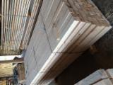 Nadelschnittholz, Besäumtes Holz Fichte Picea Abies  - Kiefer  - Föhre, Fichte