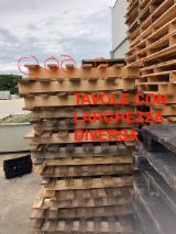 Laubholz  Blockware, Unbesäumtes Holz Italien - Loseware