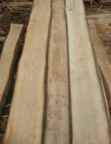 Sawn and Structural Timber - KD ABC Unedged Ash Timber, 65 mm