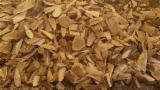 薪材、木质颗粒及木废料 - 木芯片 – 树皮 – 锯切 – 锯屑 – 刨削 边角料 鹅耳枥, 榉木, 刺槐