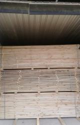 Holzbearbeitung - Lohntrocknung, Weißrussland