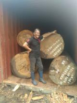 Gezaagd En Gelamineerd Hout Afrika - Gevierschaald Hout, Doussie , Vene, Kosso Wood, Tali