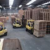 Aziende Intere In Vendita in Vendita - Vendo Produzione Pallets Portogallo