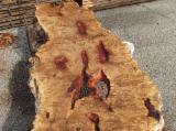 Laubholz  Blockware, Unbesäumtes Holz Italien - Blockware, Pappel