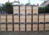 Moldova - Fordaq Online market - European Softwood, Solid Wood, Fir , Siberian Fir