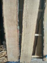 Hardwood Timber - Unedged Timber - Boules  - Fordaq Online market - Boules, Oak, 32-52 mm
