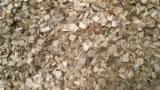 Brandhout - Resthout - Houtspaanders Uit Het Bos