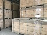 Solid Wood Panels China - Paulownia finger joint board