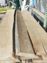Unedged Hardwood Timber - Unedged Lumber Loose, Beech, Oak, White Ash