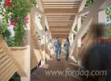 Glued Beams & Panels For Construction  - Join Fordaq And See Best Glulam Offers And Demands - Glulam – Kavisli Kirişler, cd_specieSoft_Radiata Pine