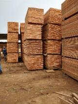 Gezaagd En Gelamineerd Hout Afrika - Gevierschaald Hout, Okoumé