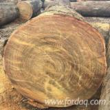 Vietnam Hardwood Logs - Buying A/B Tali Logs, diameter 80+ cm