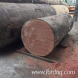 Vietnam Hardwood Logs - Looking for A/B Sapelli logs