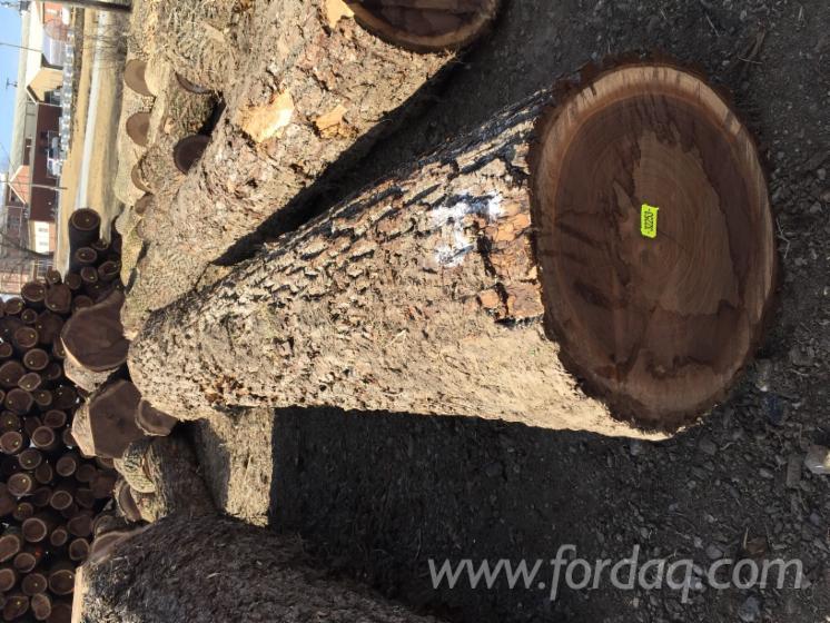 Walnut--Oak-Veneer-Logs
