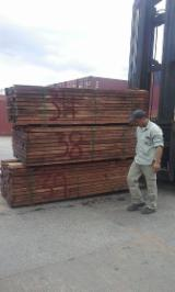 Hardwood  Sawn Timber - Lumber - Planed Timber Steamed > 24 Hours - Curupay Fresh Beams 50 mm