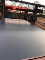 模板胶合板