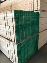 LVL - Laminated Veneer Lumber Radiata Pine - Vendo LVL - Laminated Veneer Lumber Radiata Pine Cina