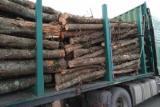 Buy Or Sell Hardwood Firewood - Beech, Oak, Hornbeam Firewood, Not Cleaved