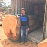 Fordaq wood market - Doussie & Tali square logs availabe 3000 cbm per month