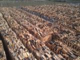 Kupiti Ili Prodati  Komercijalno Posredništvo Za Drvo Usluge - Komercijalno Posredništvo, Rumunija
