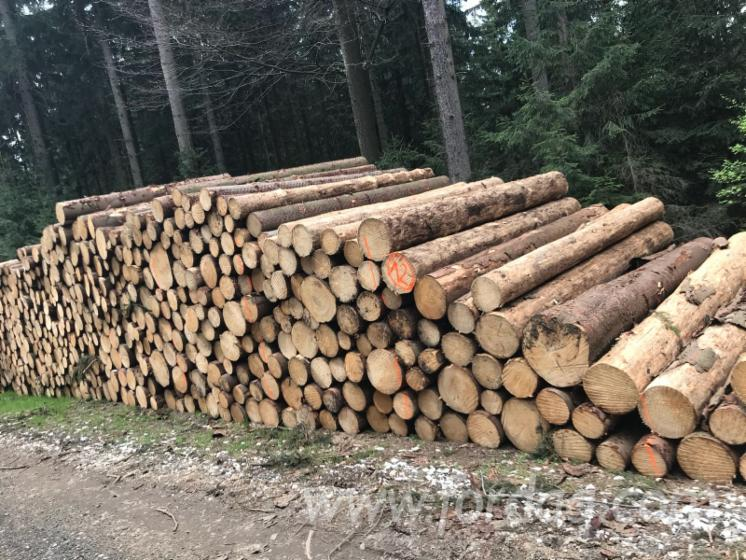 Pine - Scots Pine, Spruce 35+ cm A; B; C Saw Logs from Poland