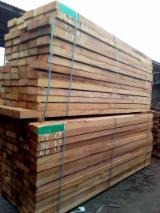 锯材及结构木材 - 木板, 绿柄桑木