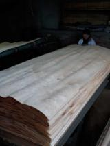 Rotary Cut Veneer For Sale - Rotary cut Birch Veneers