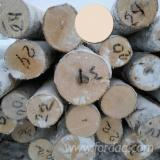 Birch  Hardwood Logs - 18-45 cm Birch Veneer Logs from Russia, Perm Region