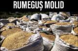 Rumeguş - Rumegus Uscat din Molid - 60 lei