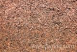 Firewood, Pellets And Residues - Beech, Oak Wood Chips From Used Wood