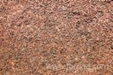 Tocatura - Vând tocatura lemnoasa din foioase europene