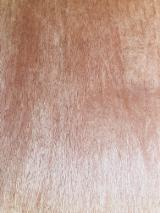 Buy Or Sell  Fancy Decorative Plywood - Bintangor Face Poplar Core Plywood for Furniture 2-30 mm/few splinter after cutting