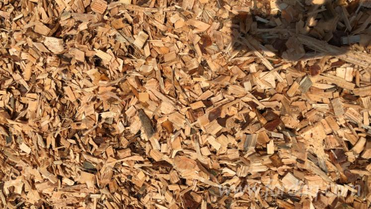 FSC Pine/ Spruce Wood Chips For Sell