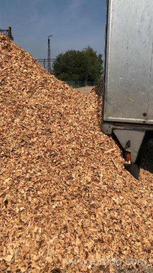 Vender-Lascas-De-Madeira-Da-Serraria-Pinus---Sequ%C3%B3ia-Vermelha