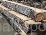 Laubholz  Blockware, Unbesäumtes Holz - Einseitig Besäumte Bretter, Eiche