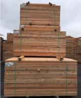 Trouvez tous les produits bois sur Fordaq - Mobilier Rustique - Poutres, pièces équarries, poteaux de Cèdre Blanc du Nord naturellement imputrescibles