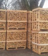 Energie- Und Feuerholz Brennholz Gespalten - Hainbuche Brennholz