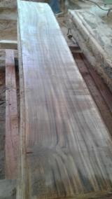 Unedged Hardwood Timber - Teak Loose from Ecuador