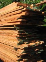 Hardwood  Unedged Timber - Flitches - Boules For Sale - Cedro Loose from Suriname