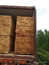 Ukraine Sawn Timber - Timber Sale Offer