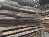 Cele mai noi oferte pentru produse din lemn - Fordaq - Vand Cherestea Netivită/bulzi Kiaat  26;  52;  76;  80;   mm