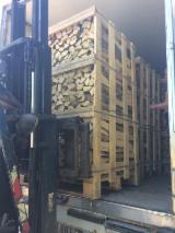 Firewood/Woodlogs Not Cleaved - Hornbeam, Oak, White Ash Firewood/Woodlogs Not Cleaved 7-14 cm