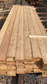 Latvia Sawn Timber - Siberian Larch, Edged Boards