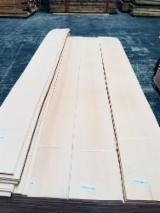 Beech Veneer Sheets For Sale From Turkey