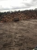 澳洲 - Fordaq 在线 市場 - 劈切薪材 – 未劈切 碳材/开裂原木 黑基木, 胶, 象牙树皮