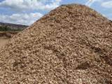 Wood Chips From Used Wood - Common Black Alder, Maple, Beech Wood Chips From Used Wood