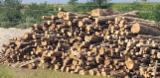 Firewood - -- mm Beech Firewood from Romania, Arges