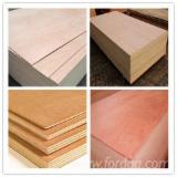 null - AA Commercial Plywood China